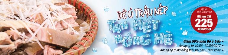 DUT-web-banner-bai-viet